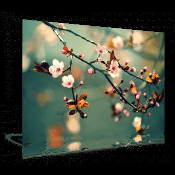 fotoafdruk mat - Art Center Hoorn