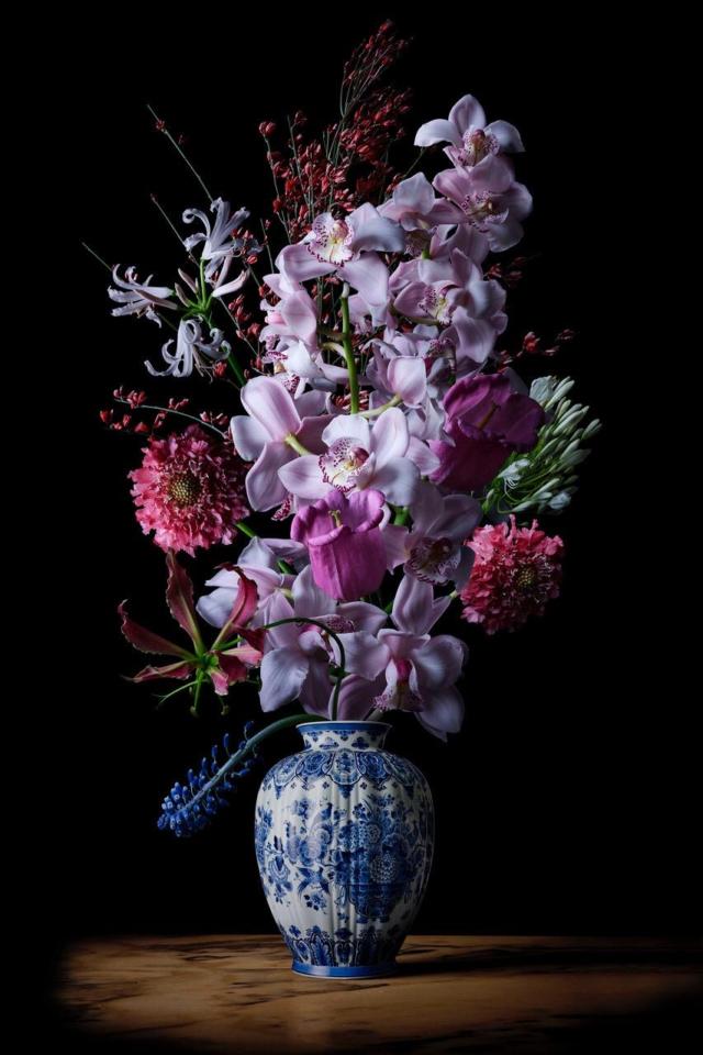 Royal Dragon - Bloemenfotografie - Hans Pieterse - Art Center Hoorn